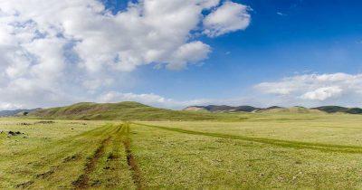 Mongoliet/Mongolia 2014. Resa med Avifauna/Trip with AvifaunaLat: 46.734078N, Long: 101.229822E © Kristian Adolfsson (www.adolfsson.photo)